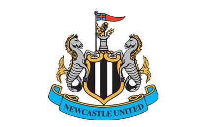 2020/04/01 体育足球竞猜怎么玩 沙特财团可能夏天收购纽卡斯尔,价格约为3.4亿英镑